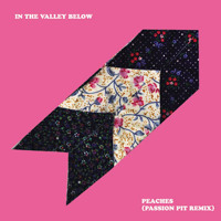 In The Valley Below Peaches (Passion Pit Remix) Artwork