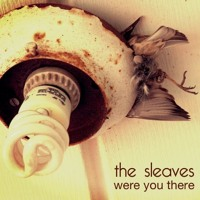 The Sleaves Were You There Artwork