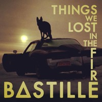 Bastille Things We Lost In The Fire (Torn Remix) Artwork