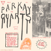 Parquet Courts You've Got me Wonderin' Now Artwork