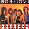 Bonjovi- Livin On A Prayer(covered by MannSik)