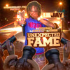Lil Jay- Flexin N Finesse Feat Billionaire Black ( Unexpected fame Mixtape )