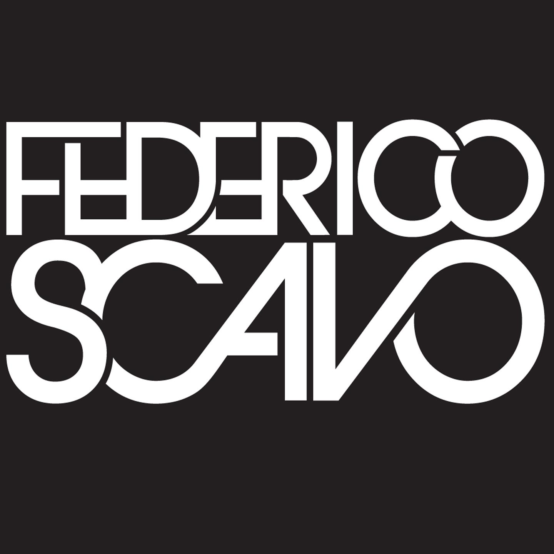 Avicii - Wake Me Up (Federico Scavo Remix)