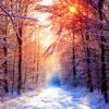 Winter Mp3