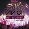 Avicii - Hey Brother [MashMike extended] album artwork