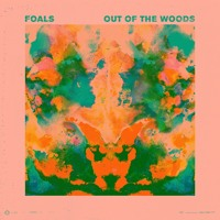 Foals Out Of The Woods (Kulkid Remix) Artwork