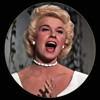 Doris Day - Fly me to the moon (Cover)