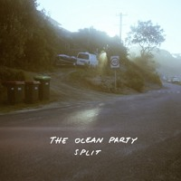 The Ocean Party Quarter Life Crisis Artwork