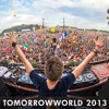 Live at TomorrowWorld Mainstage 2013