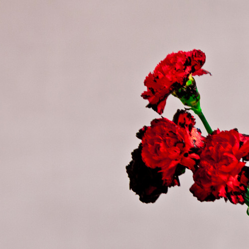 Download All Of Me by johnlegend Mp3 Download MP3