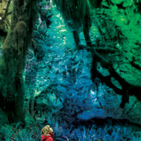 Jacco Gardner Clear The Air Artwork