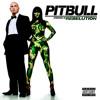 Pitbull - Hotel Room Service (Farasat Anees Full Instrumental Remake)
