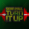 Sean Paul - Turn It Up album artwork