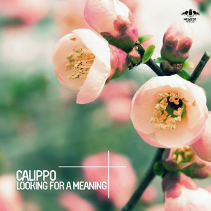 Looking For A Meaning (Croatia Squad Remix) by Calippo