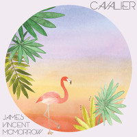 James Vincent McMorrow Cavalier Artwork