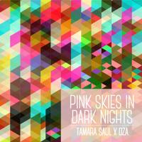 Tamara Saul Pink Skies In Dark Nights Artwork