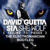 David Guetta feat. Sia - She Wolf (Falling to Pieces) (The Electromancian Bootleg)