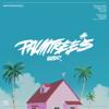 Palm Trees- Flatbush Zombies Instrumental