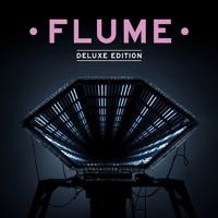 Flume Insane (L D R U Remix) Artwork