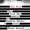 Free Download The Mole by Peter Warner, Narrated by David Ledoux Mp3