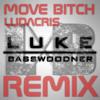 Move Bitch (Get Out The Way) Ludacris ft. Mystikal | Luke Basswoodner Remix