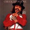 Chuck Mangione/Grant Geissman- Feels So Good (Solo Cover)