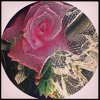 Dama Dam Mast Qalandar (Ecstatic Qalandar mix)- Global Mystic