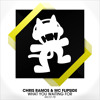 Chris Ramos & MC Flipside - What You Waiting For album artwork