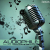 Just be Crazy. (V.A Audiophile Vol.4 ) By Spin Twist.