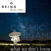 Martin Rees — Cosmic Origami and What We Don't Know