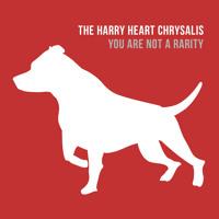 The Harry Heart Chrysalis You Are Not A Rarity Artwork