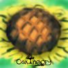 Daftar Lagu OakTheory - Himawari ( JKT48 cover ) mp3 (13.49 MB) on topalbums