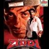 Hum Tumse Na Kuch(Duet) - Chitra & Hariharan - Ziddi