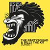 The Partysquad & Billy The Kit - Sunset album artwork