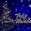 Concierto De Navidad Coro Y Orquesta UA 2013