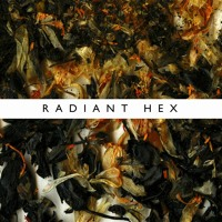 Ninetails Radient Hex Artwork