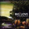 Fleetwood Mac - Big Love (De Hofnar & Sam Feldt Bootleg) album artwork