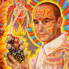 Der Größte Haufen LSD [145]