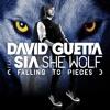 She Wolf (Falling To Pieces) Original Mix - David Guetta Feat. Sia