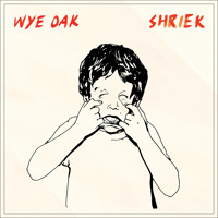 Wye Oak The Tower Artwork