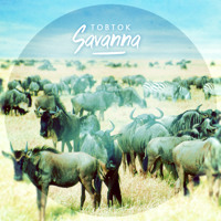 Tobtok Savanna Artwork