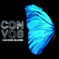 CON VOS Coast Artwork