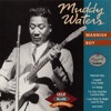 Muddy Waters and The Rolling Stones - Mannish Boy
