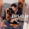"Gary Allan's ""It Ain't The Whiskey"" crowd singalong album artwork"