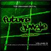 Lucas - Look At The Light (Vinyl Junkie Remix) Future Jungle Selections Volume 1