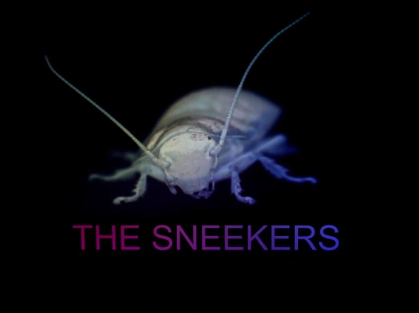 2014.02.20 - The Sneekers - Roach Mixtape 2014 Artworks-000071331627-9fbd4s-original