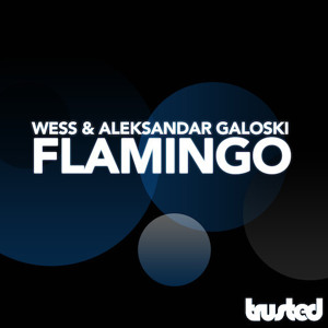 Wess & Aleksandar Galoski - Flamingo _preview