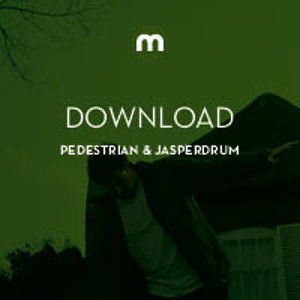 Beatamax by Pedestrian & Jasperdrum
