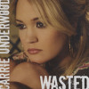 Wasted - Carrie Underwood cover