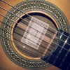 Old Chinese traditional folk song - Esteve 7 Cocobolo at Luthier Guitar Centre